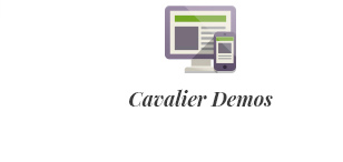 Cavalier - Vendemos las tendencias. Tema Woocommerce - 3
